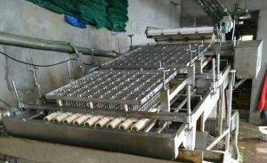 Automatic Fresh Shrimp Shell Removing Machine