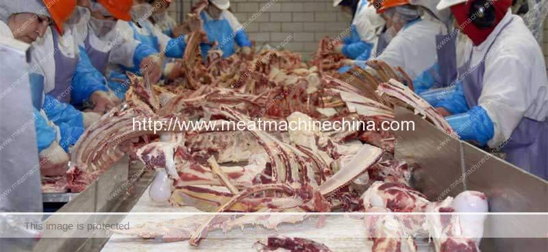 Animal-Bone-Precessing-Industry-Introduction