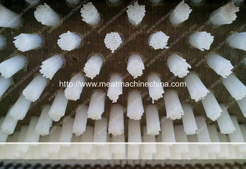 Automatic-Fish-Scale-Peeling-Machine