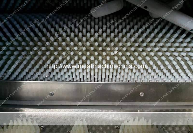 Automatic-Fish-Scale-Removing-Machine-Brush