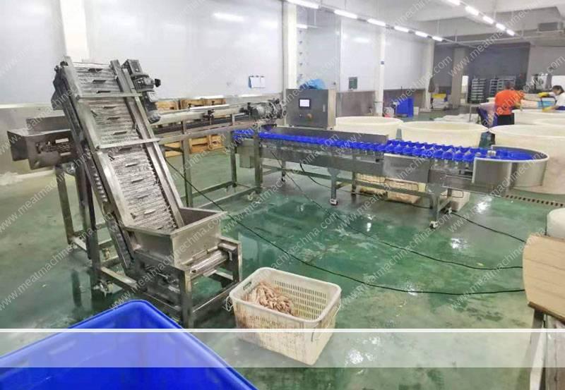 Full-Automatic-Chicken-Feet-Weight-Sorting-Machine